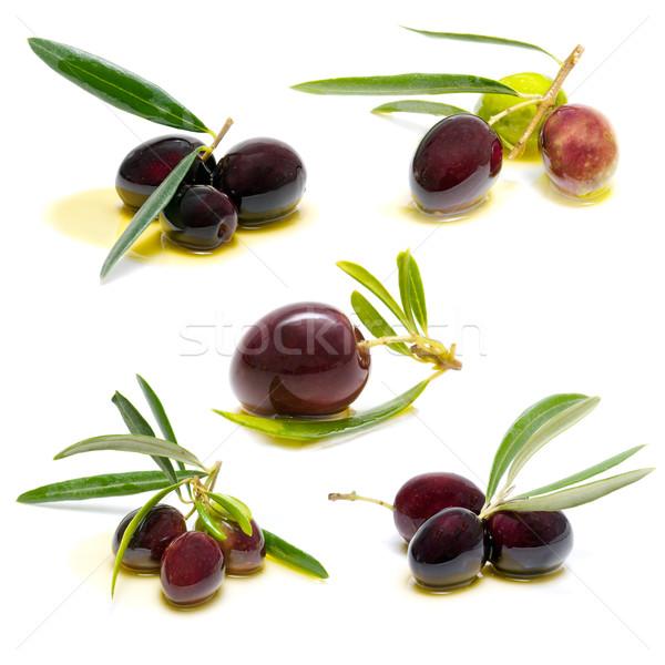 Oliwek biały żywności zdrowia pozostawia oleju Zdjęcia stock © luiscar
