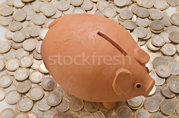 деньги детали Piggy Bank монетами бизнеса Сток-фото © luiscar