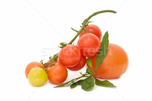 Fresco tomates branco saúde vegetal Foto stock © luiscar