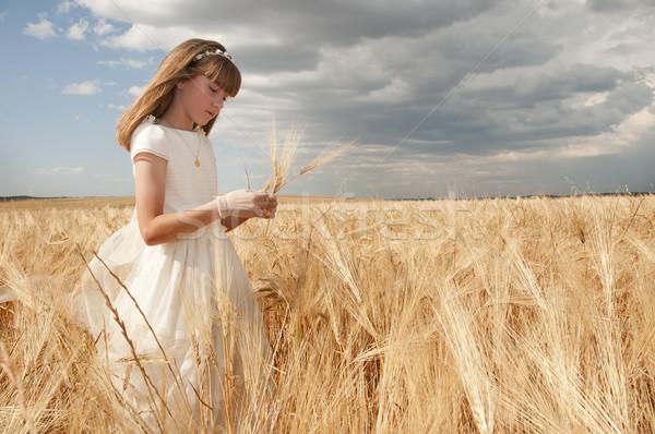 Komunii dziewczyna sukienka dziedzinie strony model Zdjęcia stock © luiscar