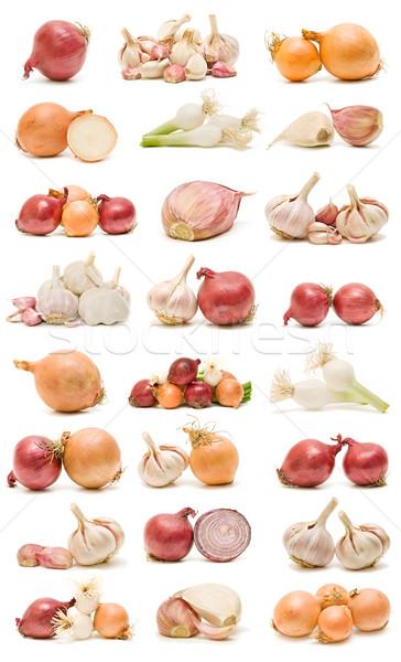 Oignons ail ensemble écologique isolé blanche Photo stock © luiscar