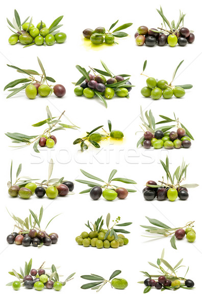 Fresco azeitonas coleção isolado branco comida Foto stock © luiscar