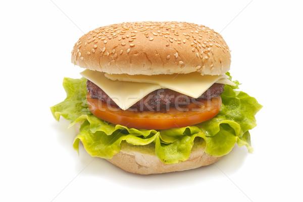 Hambúrguer especial burger queijo tomates Foto stock © luiscar