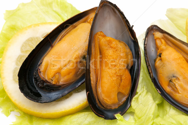 Fresco negócio comida peixe legal jantar Foto stock © luiscar