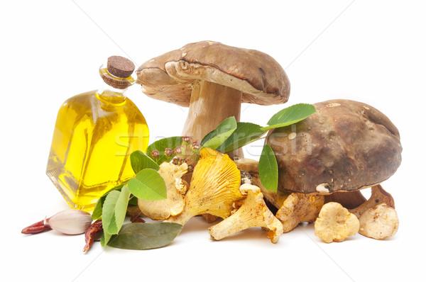 Foto stock: Cogumelos · Óleo · sazonal · azeite · branco · sol