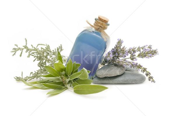 Foto d'archivio: Spa · ancora · vita · aromatico · erbe · fiore · salute