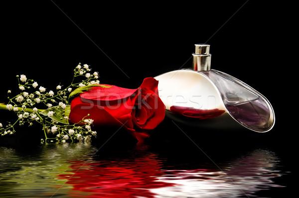 Foto stock: Rosas · preto · natureza · morta · amor · feliz · natal