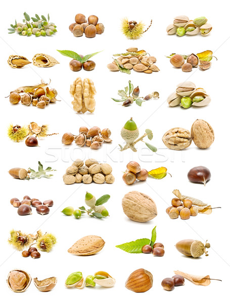 mixed nuts  Stock photo © luiscar