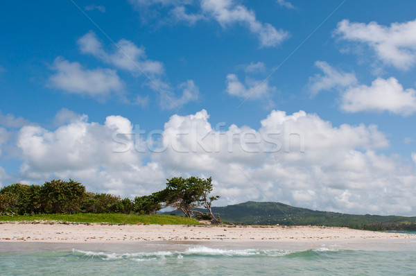 Deserted beach at Vieux Fort Stock photo © luissantos84