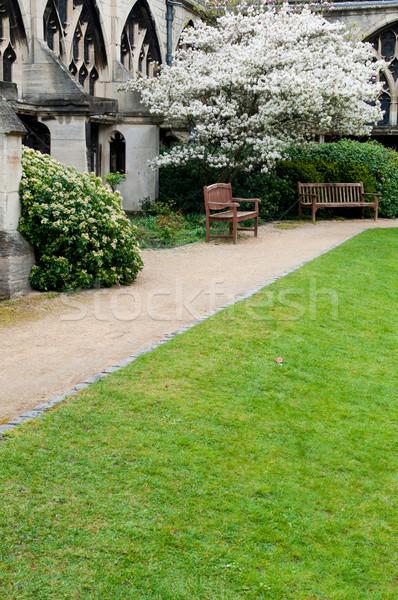 Garden in Gloucester Cathedral Stock photo © luissantos84