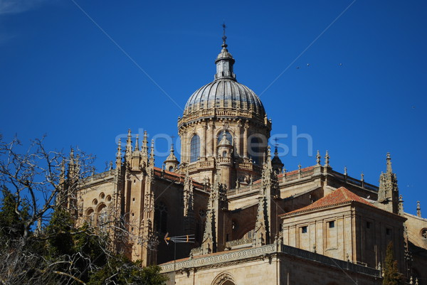 New Cathedral Dome in Salamanca, Spain Stock photo © luissantos84
