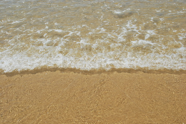 Ocean scene background Stock photo © luissantos84