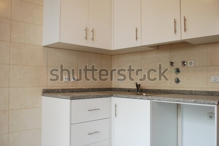 Modern apartment kitchen Stock photo © luissantos84