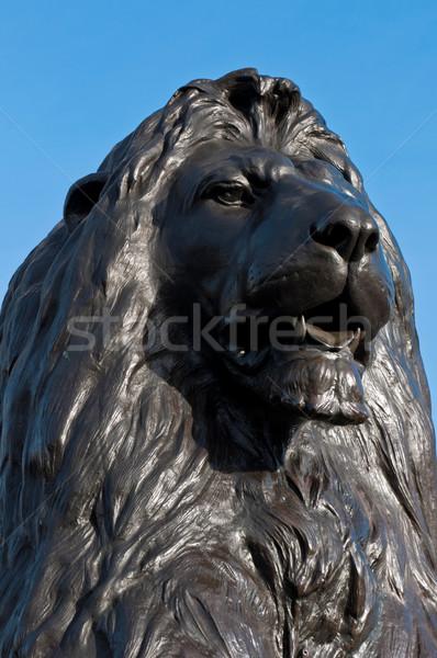 Trafalgar Square Lion Stock photo © luissantos84