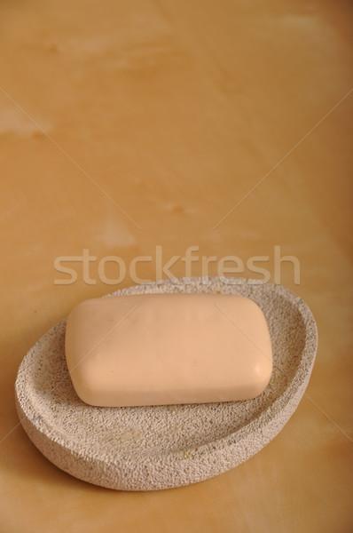 WC sapone rosolare legno spa clean Foto d'archivio © luissantos84