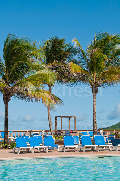 Tropical swimming pool Stock photo © luissantos84
