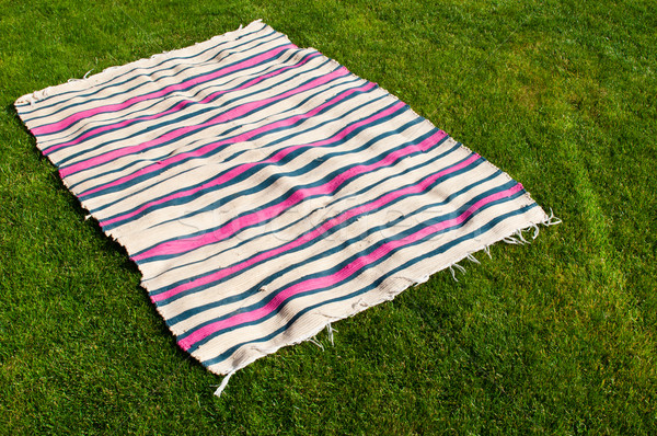 Picnic blanket Stock photo © luissantos84