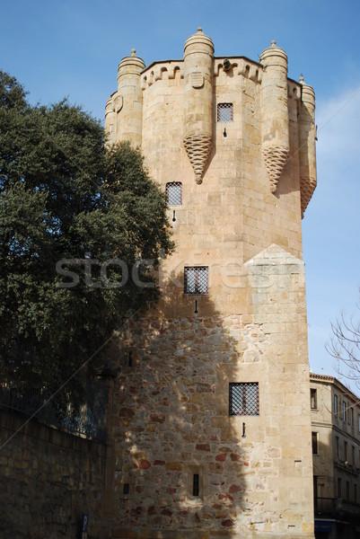 Tower of Clavero in Salamanca, Spain Stock photo © luissantos84