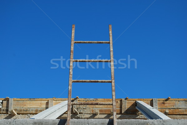 Ladder to access framework on roof Stock photo © luissantos84