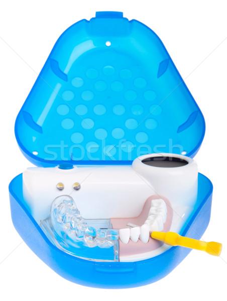 Dental model Stock photo © luissantos84