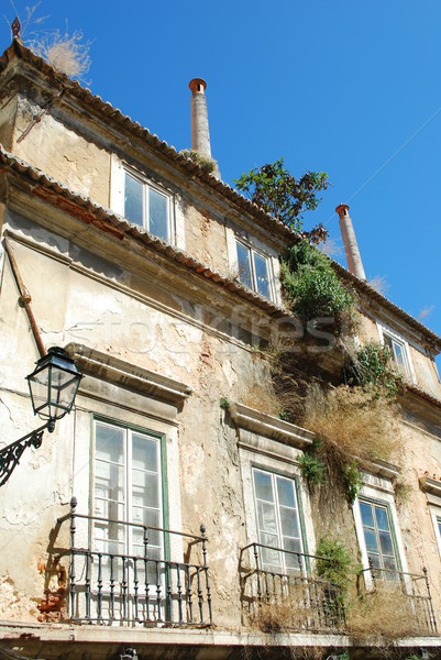 Damaged facade building with wild clinging plants Stock photo © luissantos84