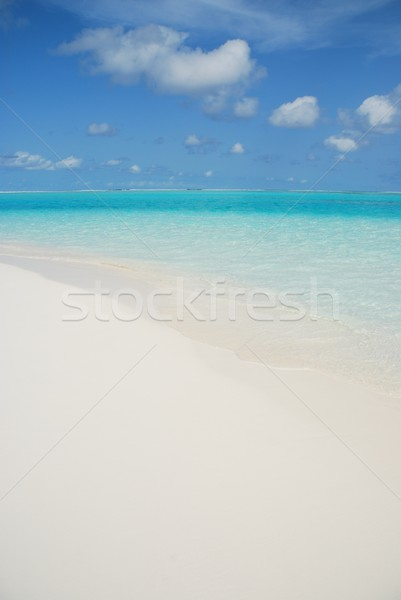 Maldives honeymoon beach island scene Stock photo © luissantos84