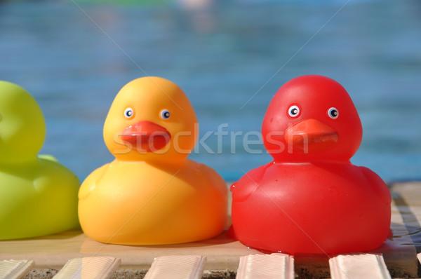 Rubber ducks Stock photo © luissantos84