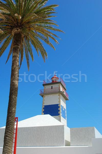 Faro foto magnifico palma Portogallo cielo Foto d'archivio © luissantos84
