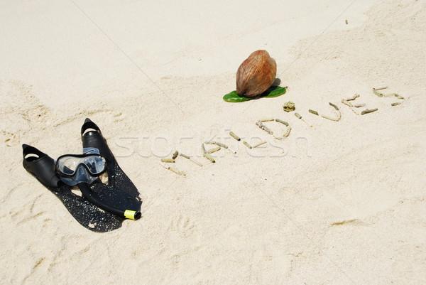 Maldív-szigetek kókusz gyümölcs snorkeling felszerlés írott Stock fotó © luissantos84