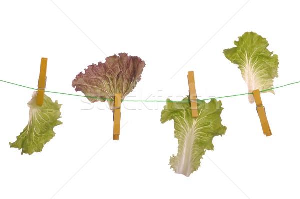 Dieting concept Stock photo © luissantos84