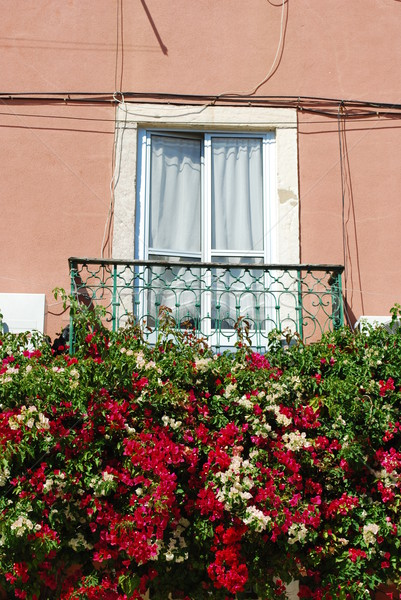 Typical window balcony with flowers in Lisbon Stock photo © luissantos84