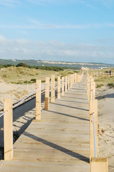 Boardwalk entering the beach Stock photo © luissantos84