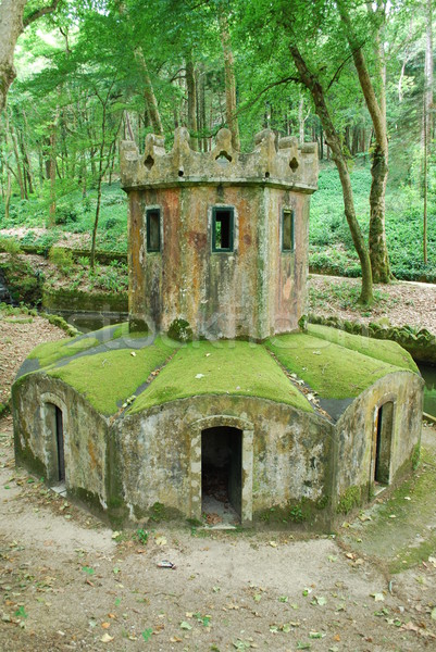 Mossy house for ducks in the forrest Stock photo © luissantos84