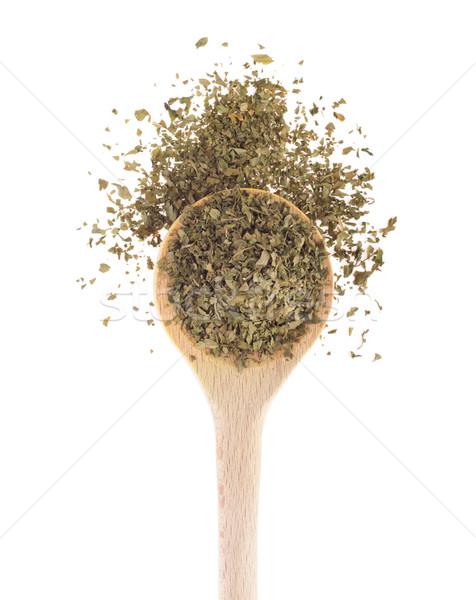 Prezzemolo Spice isolato bianco sfondo Foto d'archivio © luissantos84