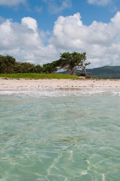 Deserted beach at Vieux Fort Stock photo © luissantos84