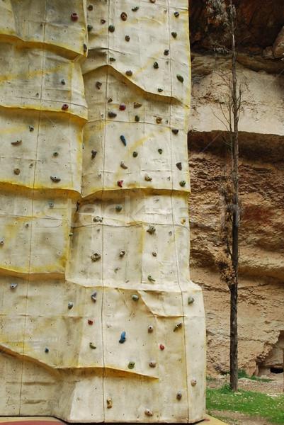 Klimmen muur park avontuurlijk leren Stockfoto © luissantos84