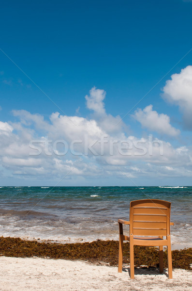 Chair at the beach Stock photo © luissantos84