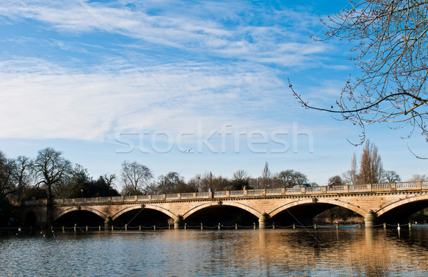 Serpentine Bridge and Lake Stock photo © luissantos84