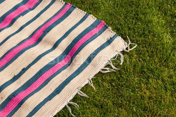 Picknickdeken kleurrijk grasveld achtergrond zomer veld Stockfoto © luissantos84