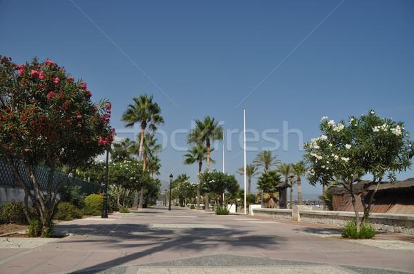Beach sidewalk Stock photo © luissantos84