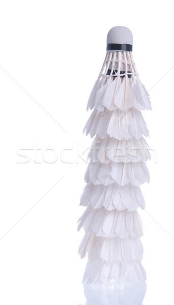 Badminton shuttlecocks Stock photo © luissantos84