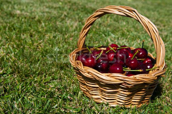 Cherries in a basket Stock photo © luissantos84