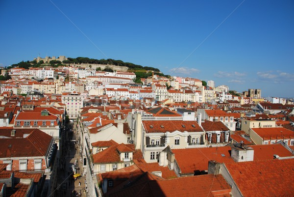 Lisbon cityscape with Sao Jorge Castle and Se Cathedral Stock photo © luissantos84