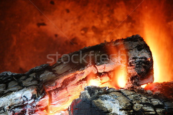 Cozy home fireplace Stock photo © luissantos84