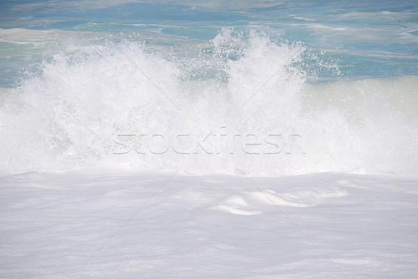 White beautiful ocean wave Stock photo © luissantos84