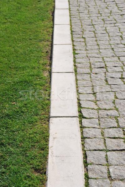 трава каменные мелкий области зеленая трава тротуар Сток-фото © luissantos84