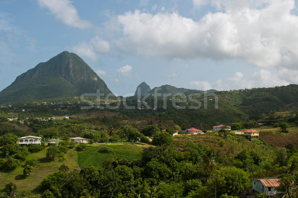 The Pitons in Saint Lucia Stock photo © luissantos84