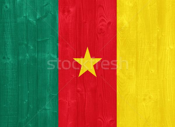 Kamerun banderą przepiękny malowany drewna deska Zdjęcia stock © luissantos84
