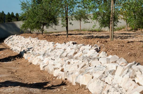 Stenen barricaderen klein boom bouw veiligheid Stockfoto © luissantos84