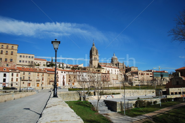 View To Salamanca (Cathedral) from Puente Romano, Spain Stock photo © luissantos84
